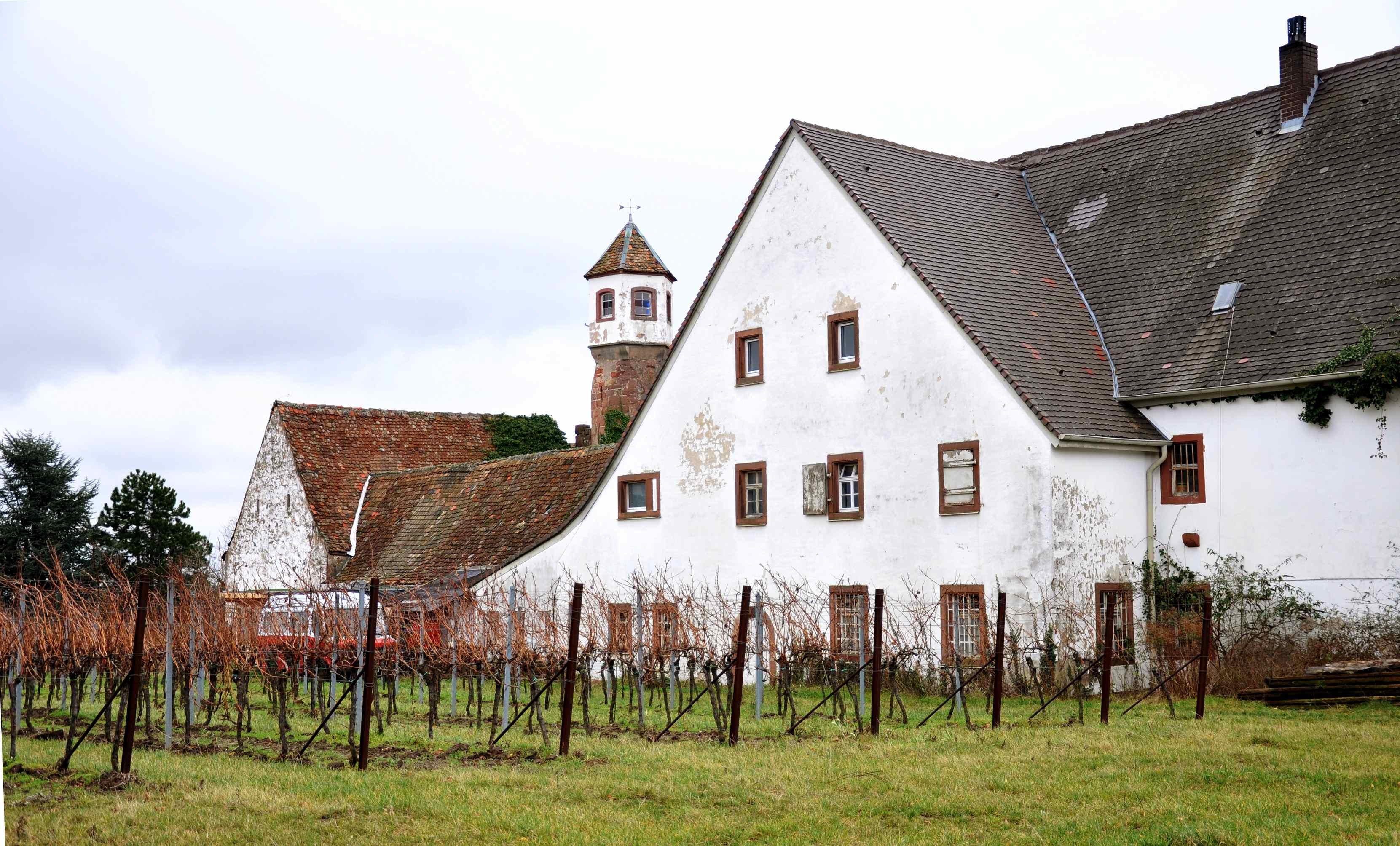 sedenkoben_Weingut_Kloster_Heilsbruck